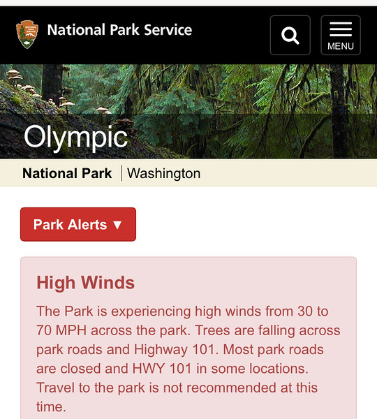wind storm in Olympic National Park